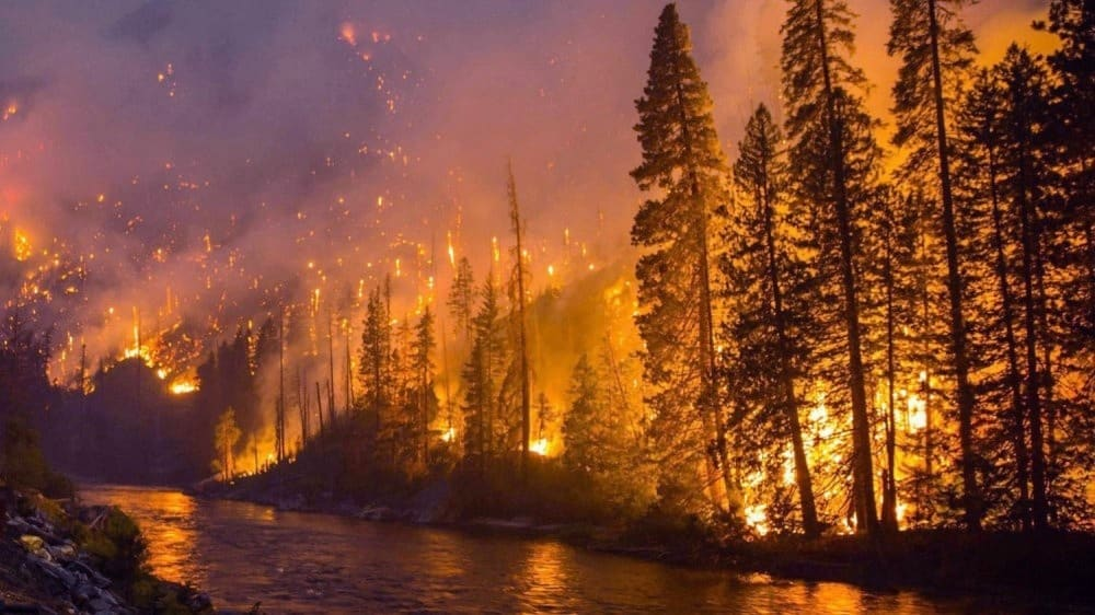BC Flood and Wildfire
